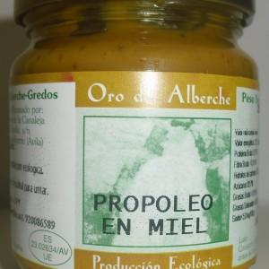 propoleo en miel 250 g.